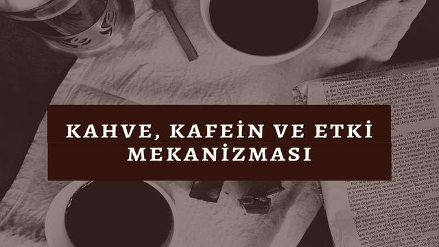 Kahve, kafein ve etki mekanizması
