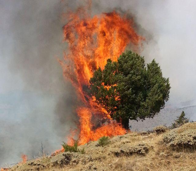 Sivas'ta Dağlık Alanda Yangın