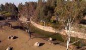 İzmir Doğal Yaşam Parkı'na Ziyaretçi Akını