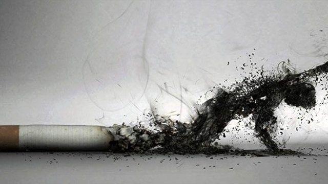 Sigaradan Ölümler, Trafik, Terör ve İş Kazasından 5 Kat Fazla'