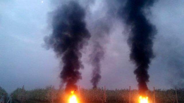 Çiftçiler Ateş Yakarak Meyve Ağaçlarını Dondan Korumaya Çalışıyor