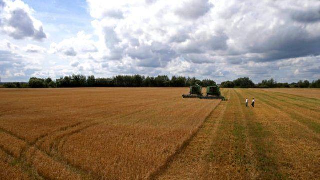 Rusya'dan Tarım Yatırımı Yapacaklara 5 Yıl Ücretsiz Arazi
