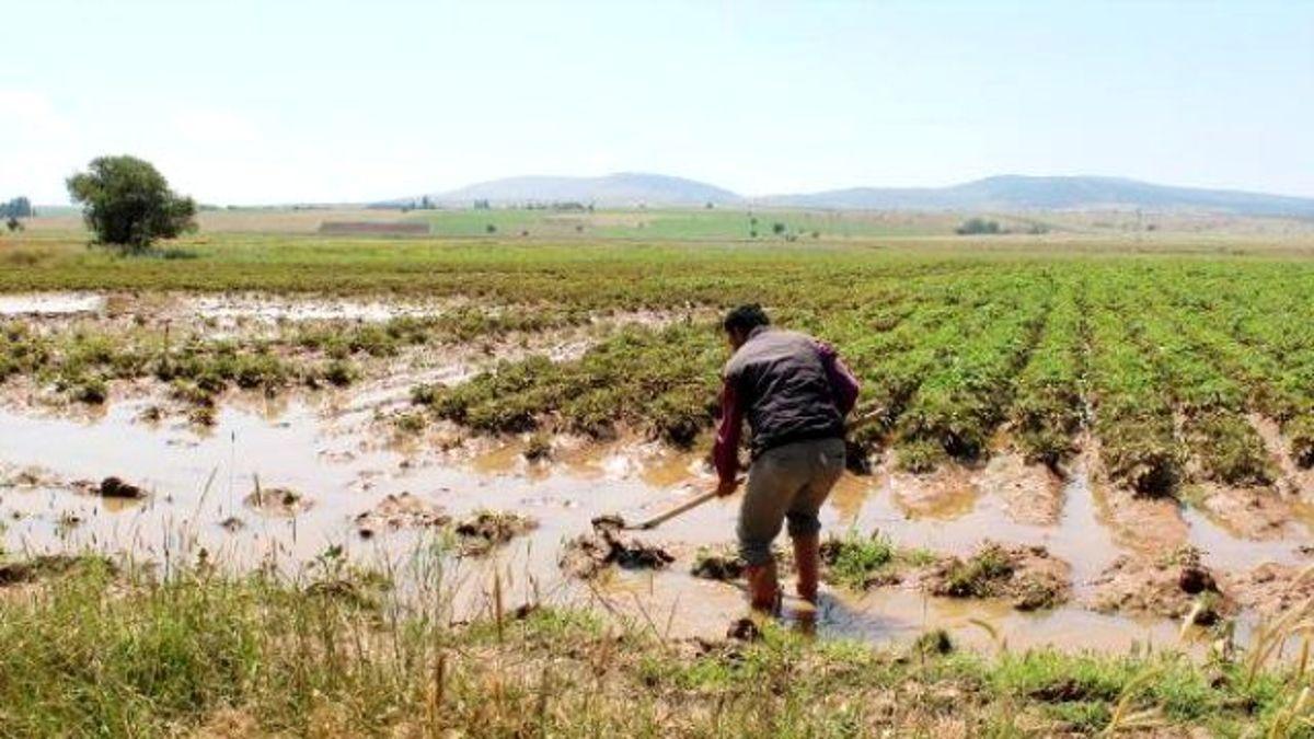 Sulama Hattının Boruları Patladı, Tarlalar Suyla Doldu