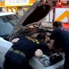 Aracının Motor Kısmına Sıkışan Kediyi Sahiplendi