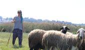 Sertifikalı Modern Kadın Çoban