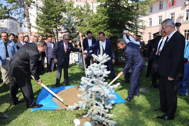 Türkiye'de Lavantaya Dayalı Sanayi Kurulumu İçin Hazırlık