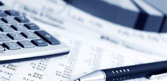 Türkiye'de Vergi Mükellefi Sayısı 10,6 Milyon Oldu