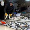 Balıkçılara Kötü Hava Engeli