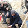 Oltu'da Afrin Şehitleri İçin Hatıra Ormanı Oluşturuldu