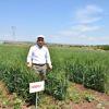 Makarnalık Buğday ve Yemlik Arpada Tescil Sevinci