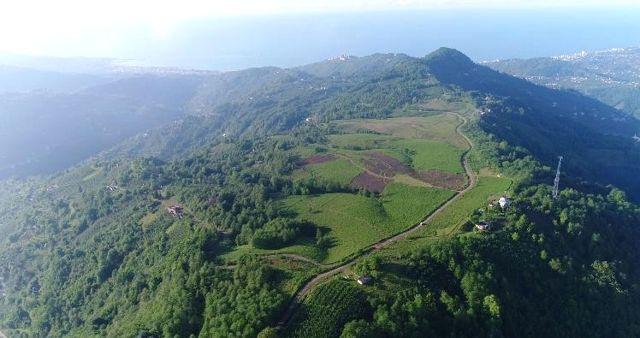 Dağın Tepesinde Kurulacak Olan Organize Sanayi Bölgesini Tanıttılar