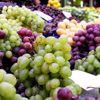 Meyve İhracatına Dünya Kupası Dopingi