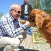 Başkan Akgün: Hiçbir Sokak Hayvanı Aç ve Susuz Kalmayacak