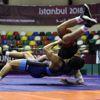 Vehbi Emre ve Hamit Kaplan Uluslararası Güreş Turnuvası