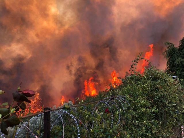 Mudanya'daki Yangının Sigara İzmaritinden Çıktığından Şüpheleniliyor