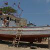 Kıyı Balıkçılarında Palamut Heyecanı