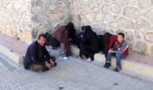 72 Düzensiz Göçmen Yakalandı