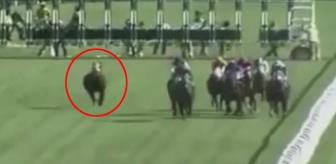 Bursa'da Jokeyini Sırtından Atan At, Yarışı İlk Sırada Bitirdi