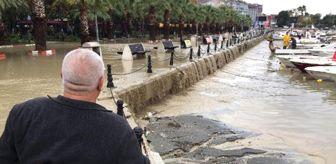Kuvvetli Yağış, Silivri Sahilinde Sele Yol Açtı