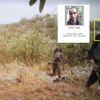 Adıyaman'da Öldürülen Teröristler 'Fotokapan' ile Görüntülenmiş