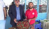 Antalya Turfanda Çilek Çıktı