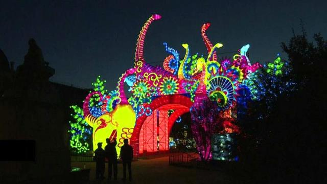 Paris te  Dev Hayvanlar  Noel i Karşılamak İçin Sahnede