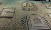 Gaziantep Çingene Kızı' Mozaiği Getirilen Parçalarıyla Ziyarete Açıldı-1