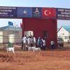 Somalili 9 Çocuk Annesinin Eğitim Aşkı- Kıtlık Yüzünden Çocuklarıyla Göç Eden 45 Yaşındaki Anne, 2...