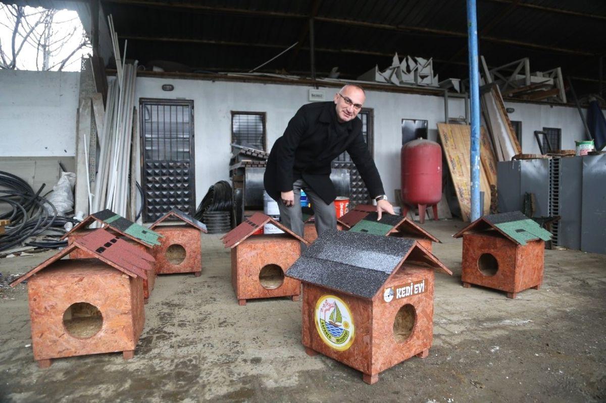 Sapanca Belediyesi'nden Kedi Evleri Projesi Hayata Geçirdi