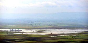 Amik Ovası: Hatay'da Yağış, Sel ve Su Baskınlarına Yol Açtı (2)