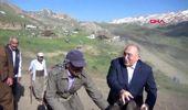 ŞIRNAK Faraşin Yaylası'nda 'Koyun Kırkma Şenliği'-2