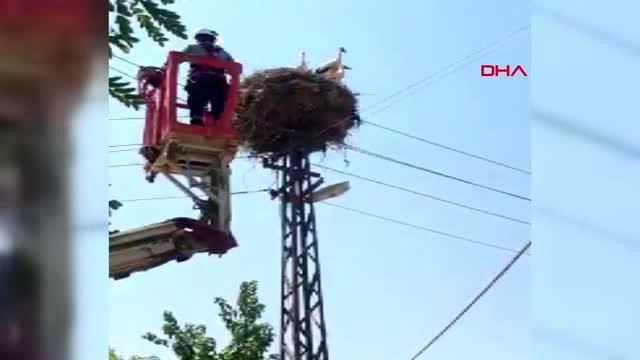 SİİRT Elektrik direğinde mahsur kalan leylek kurtarıldı