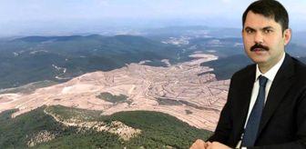 Süreyya Sadi Bilgiç: Bakan Kurum: Kaz Dağları'nda 13 bin ağaç kesildi