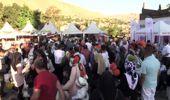 Bitlis'in düşman işgalinden kurtuluşunun 103. yılı etkinlikleri