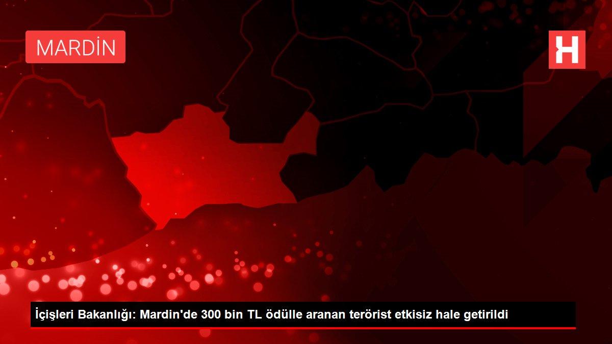 İçişleri Bakanlığı: Mardin'de 300 bin TL ödülle aranan terörist etkisiz hale getirildi