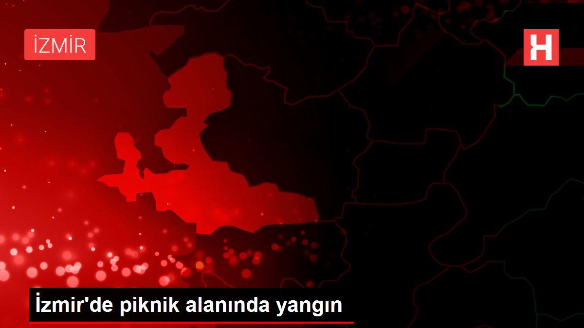 İzmir'de piknik alanında yangın