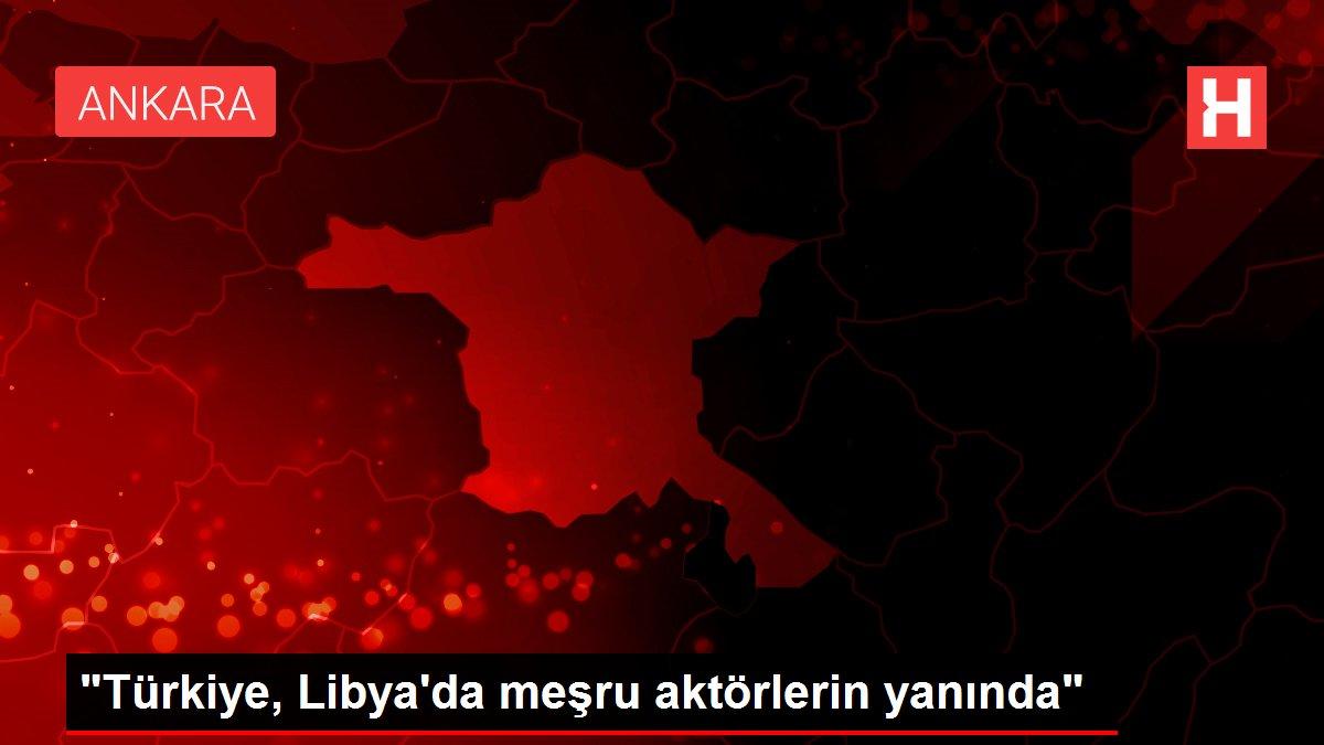 'Türkiye, Libya'da meşru aktörlerin yanında'