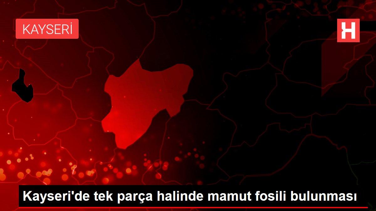 Kayseri'de tek parça halinde mamut fosili bulunması