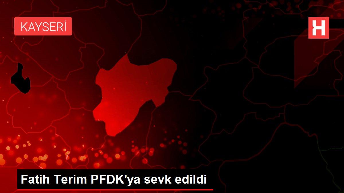Fatih Terim PFDK'ya sevk edildi