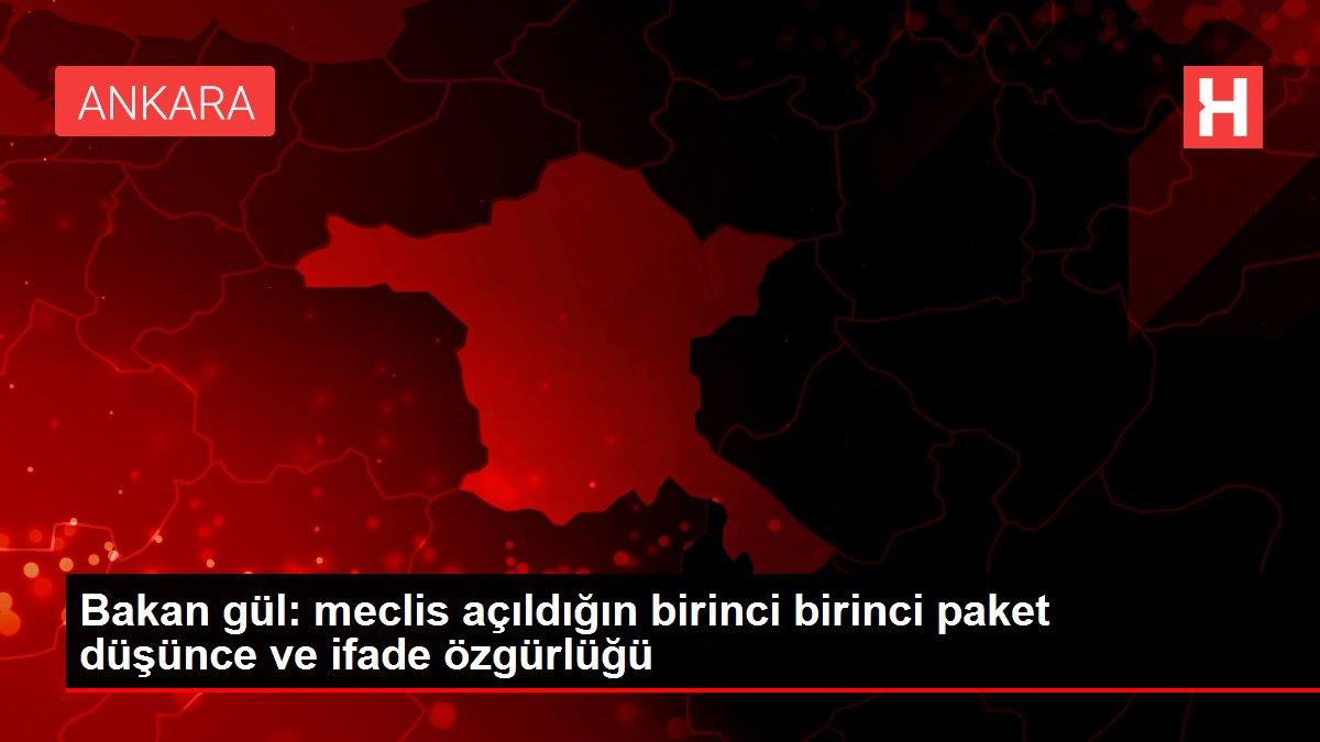 Bakan gül: meclis açıldığın birinci birinci paket düşünce ve ifade özgürlüğü