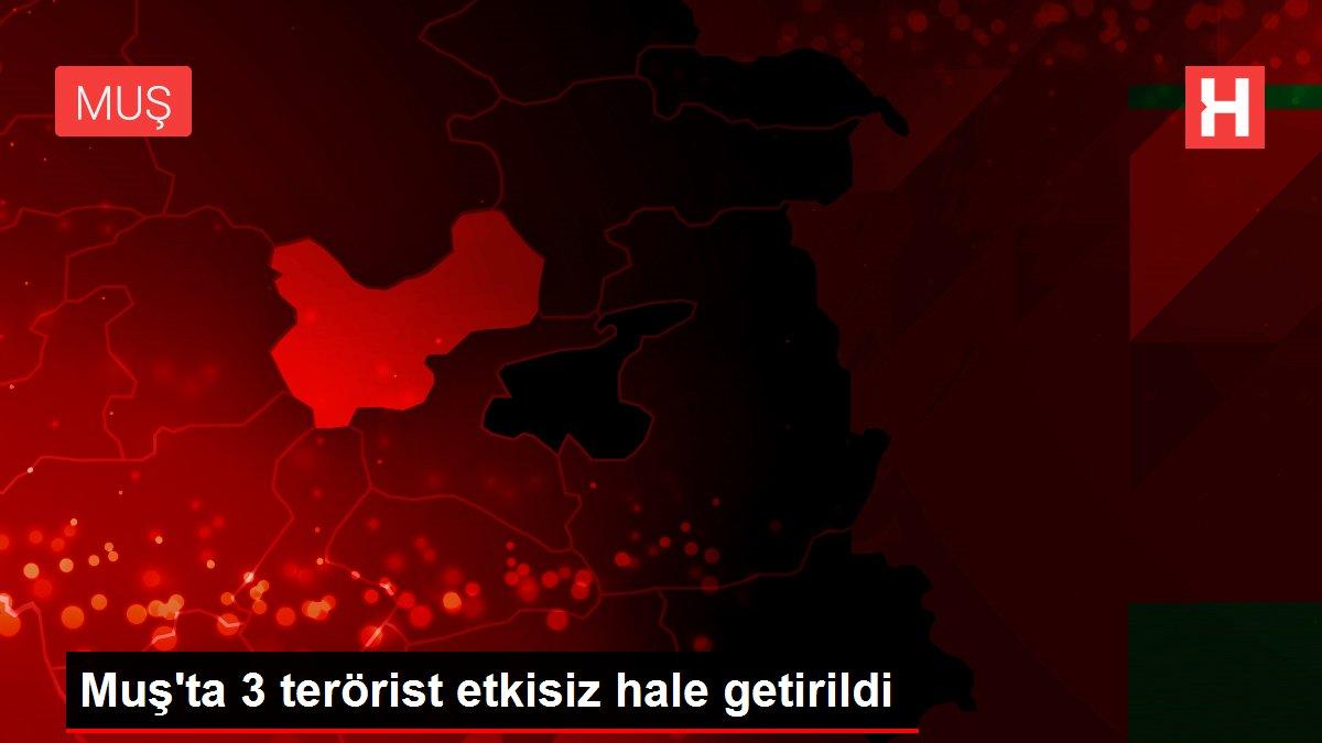 Muş'ta 3 terörist etkisiz hale getirildi