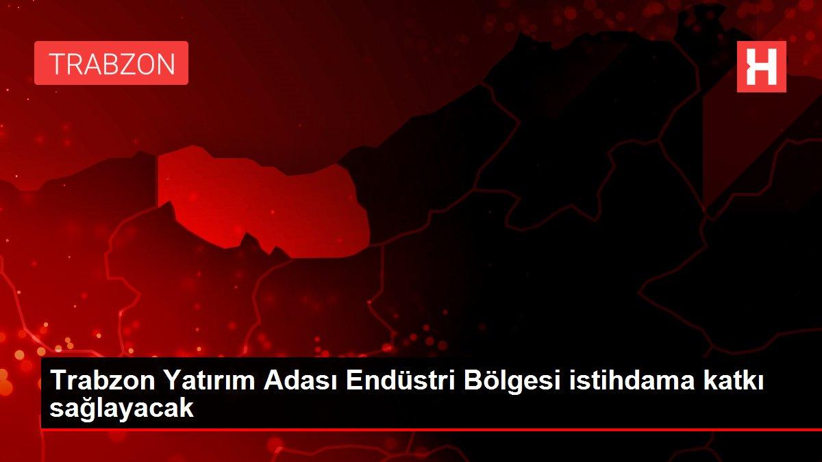 Trabzon Yatırım Adası Endüstri Bölgesi istihdama katkı sağlayacak