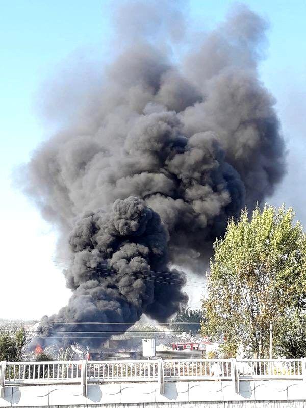 Arazide çıkan yangın; hurdalık, depo ve seralara sıçradı (2) - yeniden