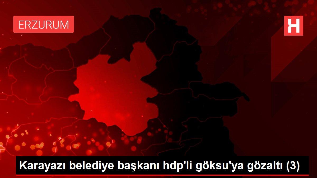 Karayazı belediye başkanı hdp'li göksu'ya gözaltı (3)