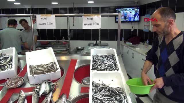 Balıkçılardan 'denizlerde av yasağı süresi' değerlendirmesi