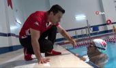Dünya'nın ilk otizmli sporcusu Ironman unvanlı Can'ın hedefi Manş Denizi'ni geçmek