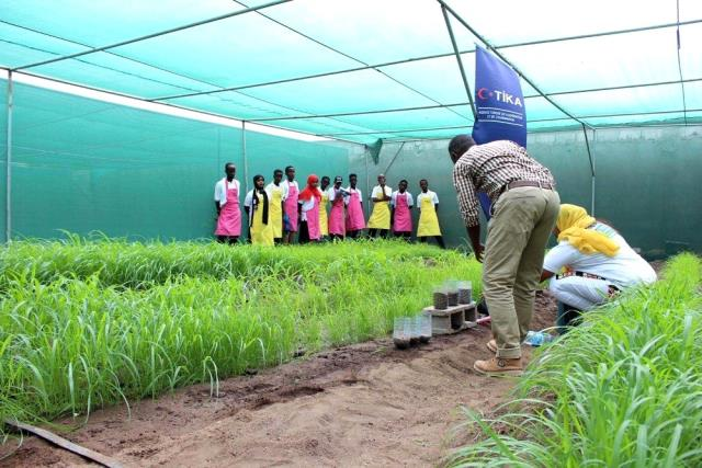 TİKA'dan, Cibuti'ye tarım desteği