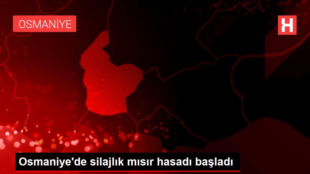 Osmaniye'de silajlık mısır hasadı başladı