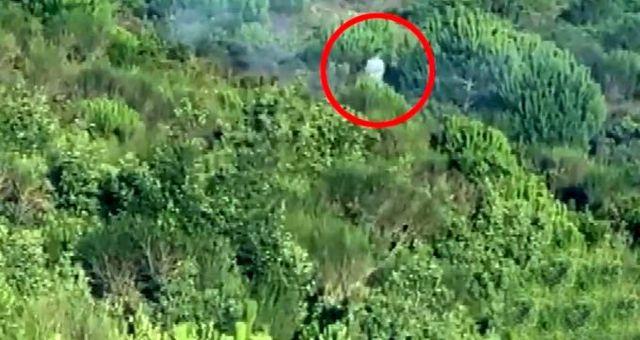 Bakan Pakdemirli: Pendik'deki orman yangınında terör bağlantısı olduğunu tespit ettik