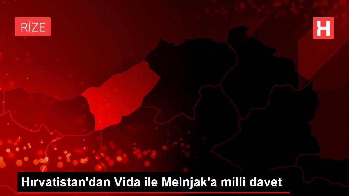 Hırvatistan'dan Vida ile Melnjak'a milli davet
